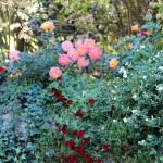 Matti Luostarinen, Cluster art, The garden of cluster art, autumn colors