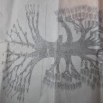 Matti Luostarinen. Cluster art. Art of cluster. Family tree. Genealogy